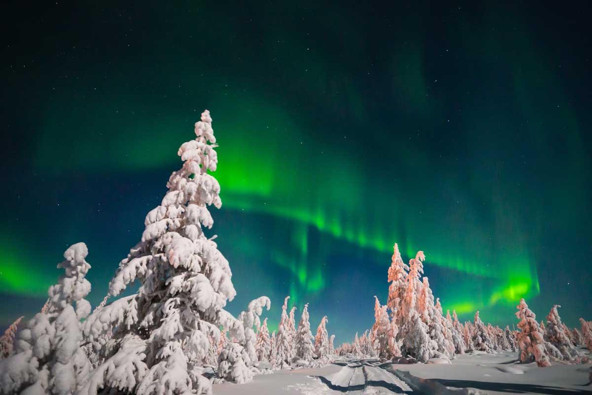 desnowtrips : Laponia Aurora Boreal