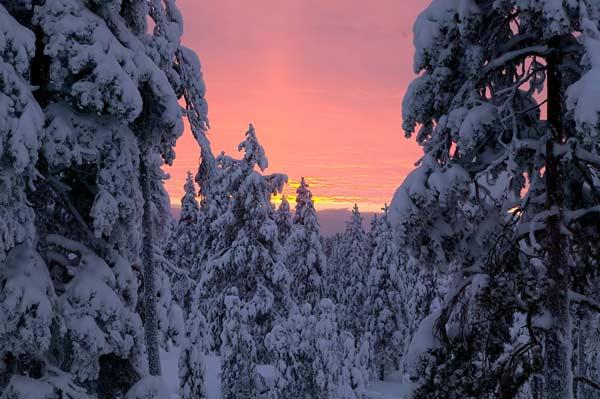 Viaje a Laponia con Desnowtrips