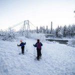 Actividades en Laponia con niños